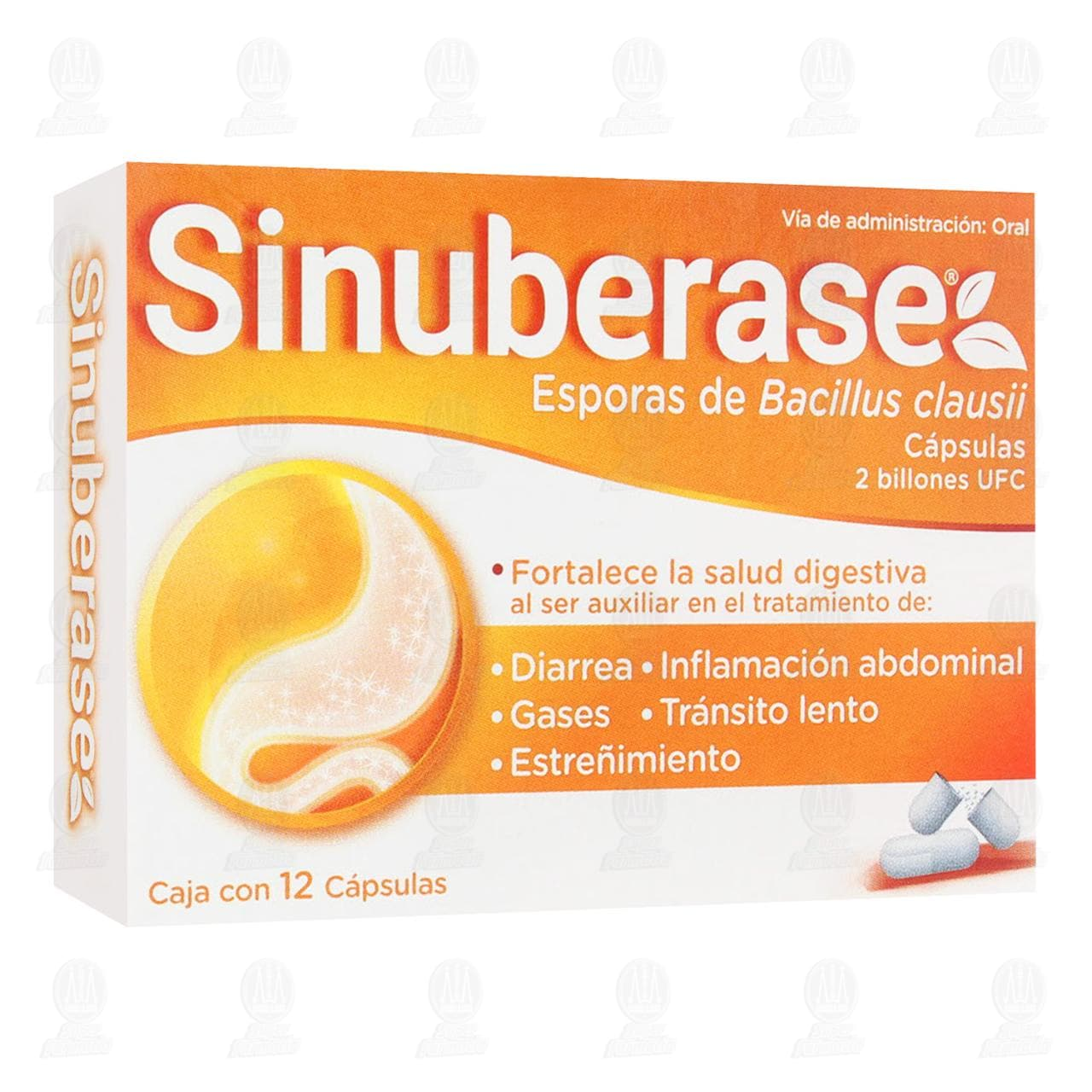 Comprar Sinuberase 12 Cápsulas en Farmacias Guadalajara