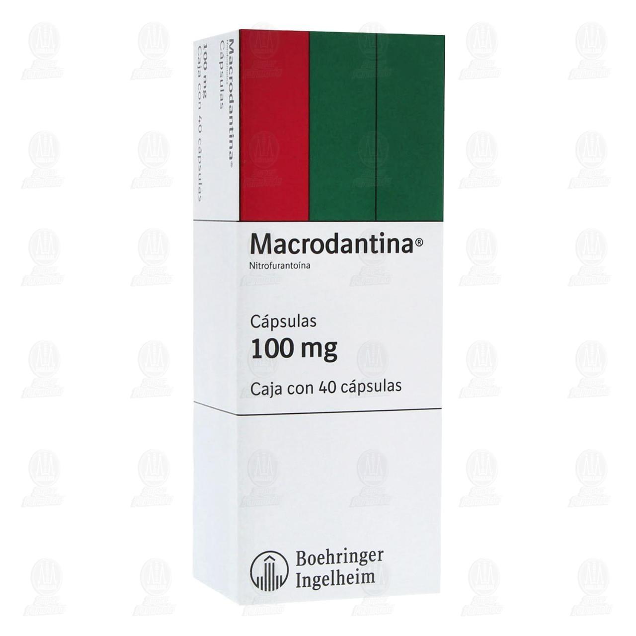 Macrodantina 100mg 40 Cápsulas