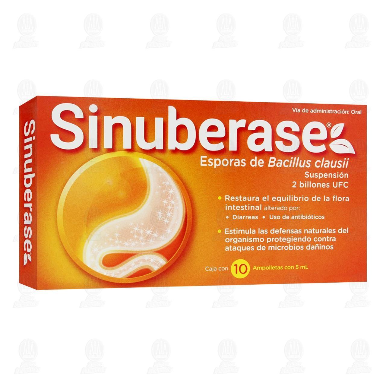Comprar Sinuberase 10 Ampolletas 5ml en Farmacias Guadalajara